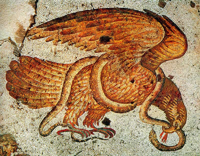 Орел и змея