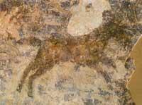 Ловля дикого коня