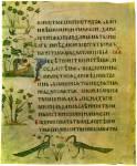 Сотворение Адама и картины рая